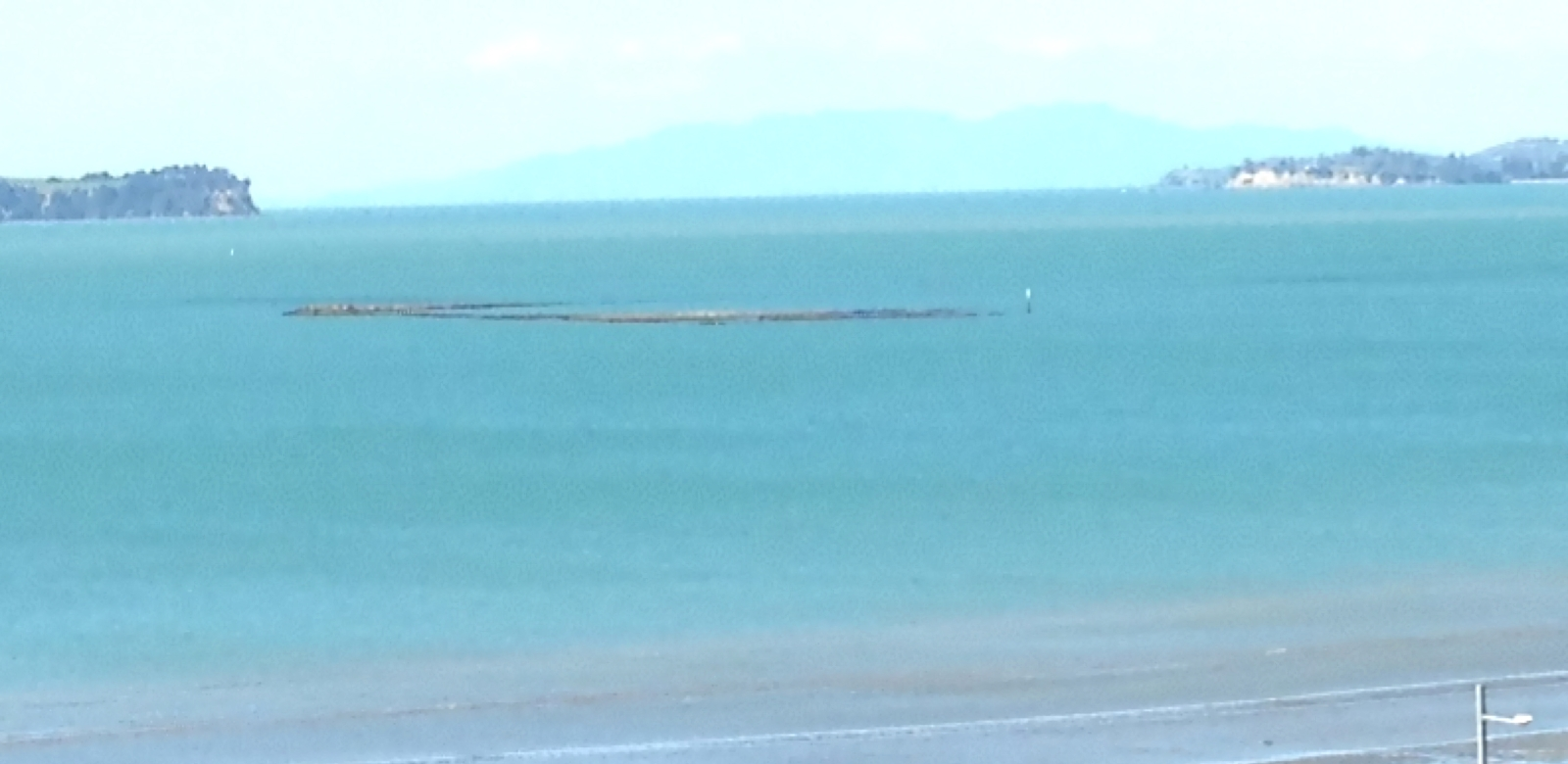 Auckland harbour - our mission brought the Society first to New Zealand, and later to Australia